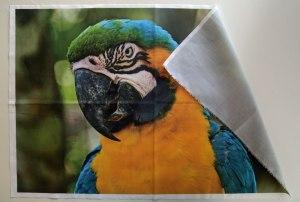 Impresión profesional a medida de fotos en tela