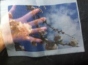 Hojas para imprimir de organza de seda