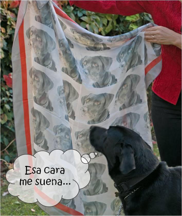 Pañuelo de seda con tu foto